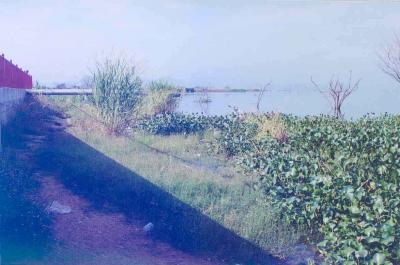 El lago al lado del muro, por encima del techo de la casa de estación de bombeo Urb. La Punta